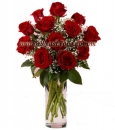 One Dozen  Stemmed  Red  Roses