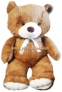 Giant Dark Brown Teddy