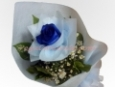 1-Stem Blue Rose