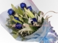 6 pcs Blue Rose